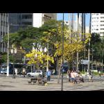 Brasilien061.jpg